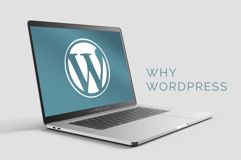 why do we suggest wordpress websites seo norfolk nebraska